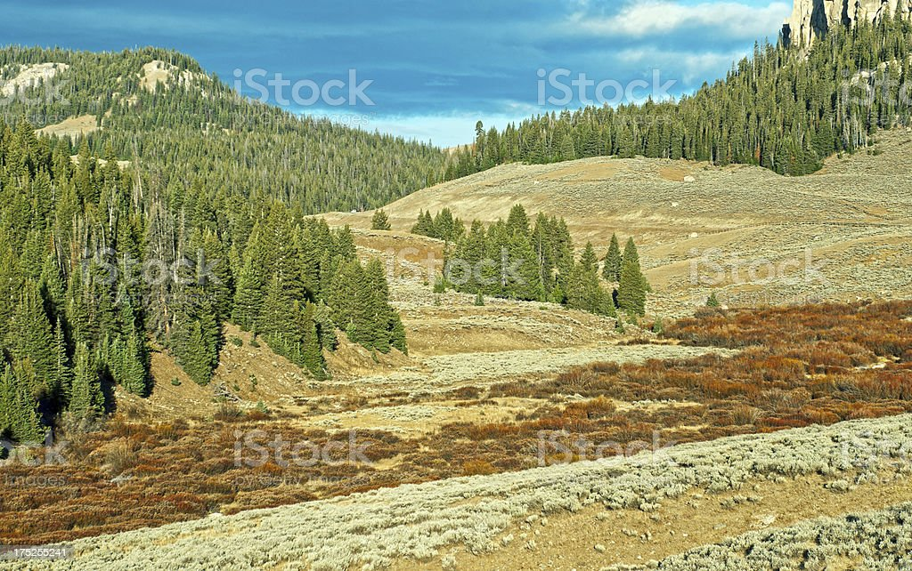 Early morning in the Big Horn Mountains of Wyoming royalty-free stock photo