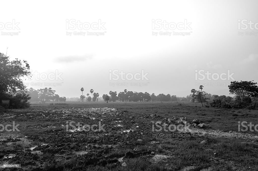 Early morning landscape in fog, idyllic fields and hills, black stock photo