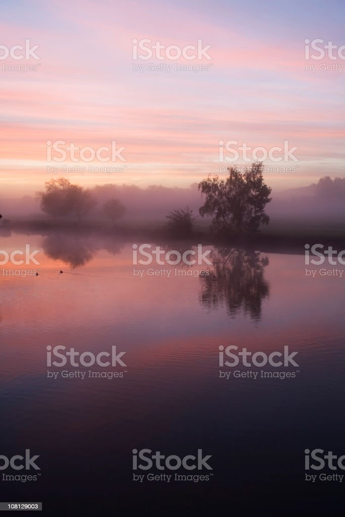 Early Morning Mist. River Thames stock photo