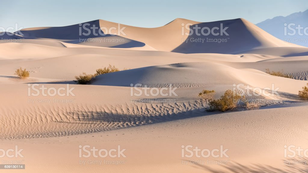 Early Morning On The Mesquite Flat Sand Dunes stock photo