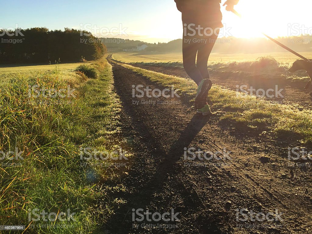 Early morning runs with her dog stock photo