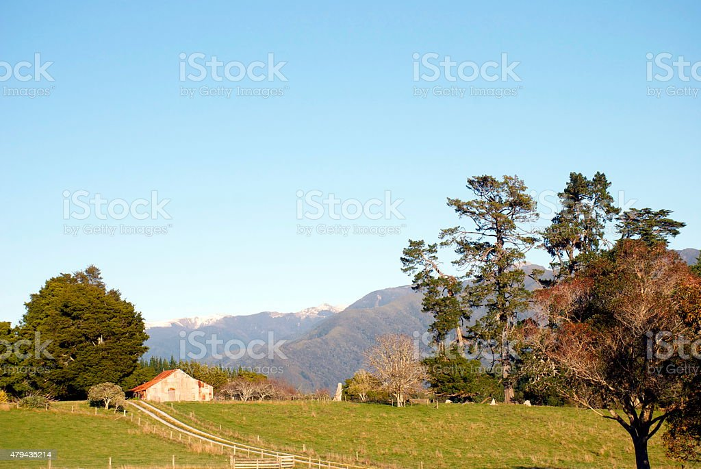 Early Morning Rural Scene, New Zealand stock photo