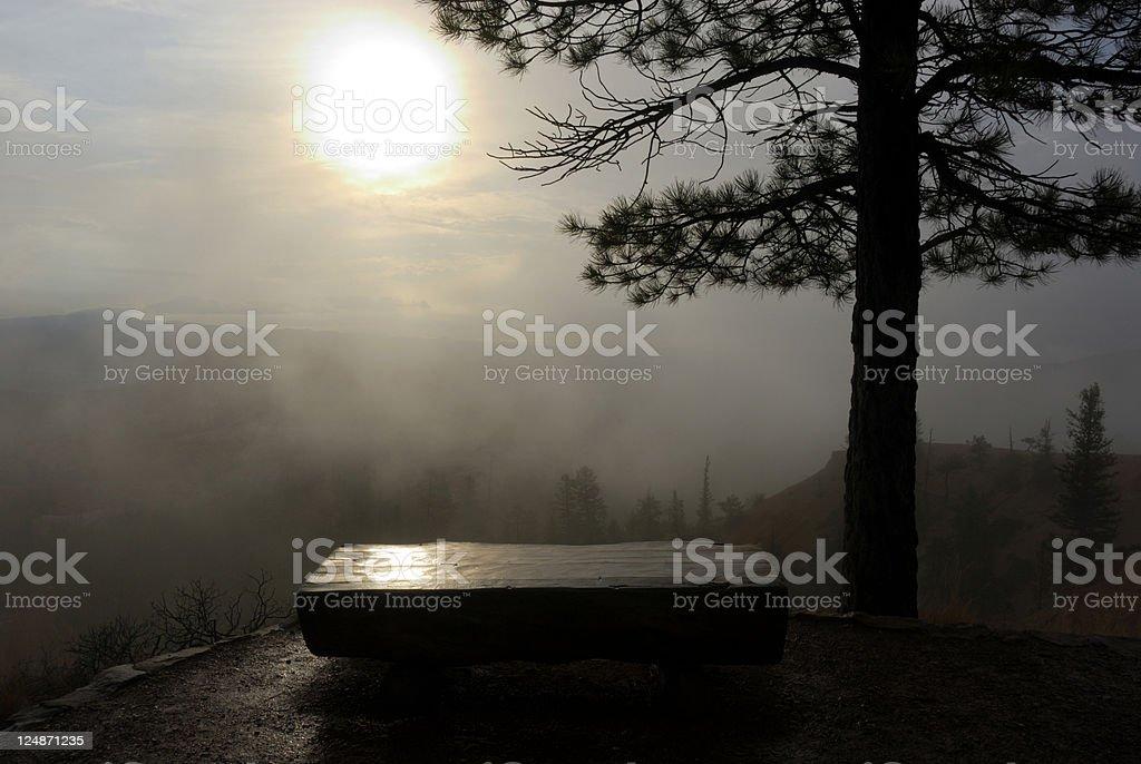 Early Morning Sanctuary royalty-free stock photo