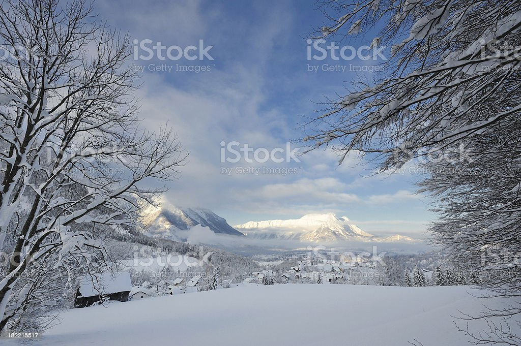 Early Morning Winter Panorama royalty-free stock photo
