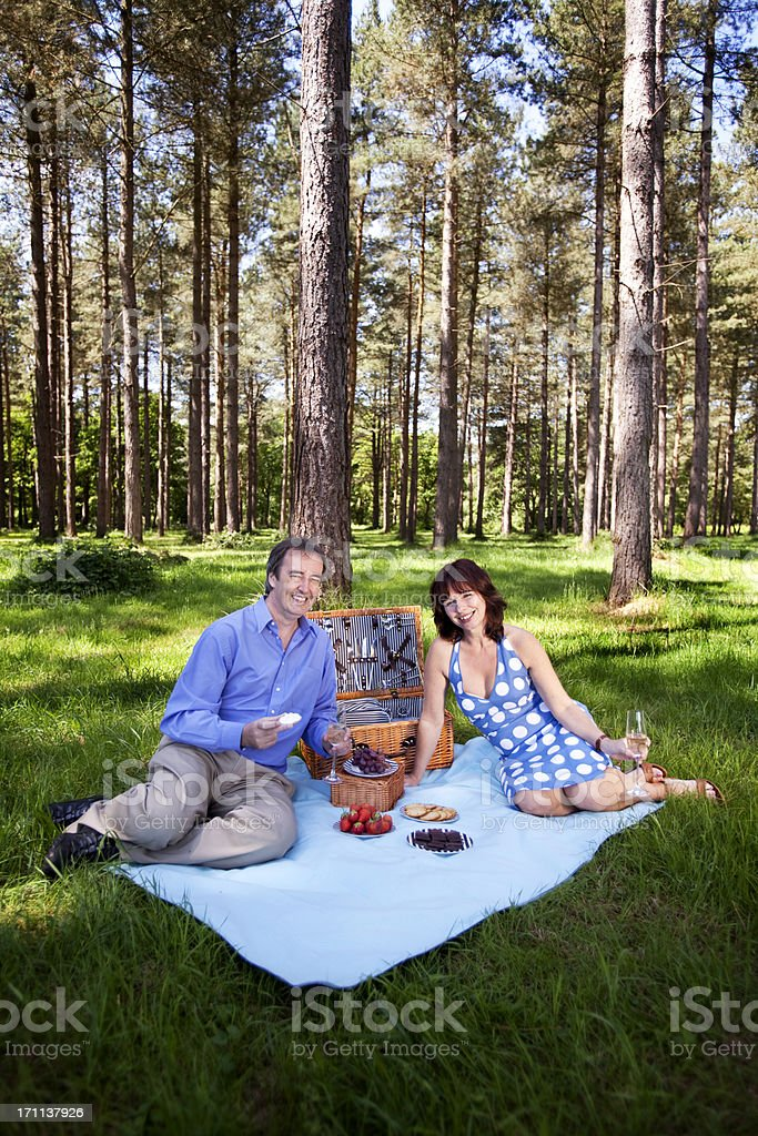 early retirement: picnic alone stock photo