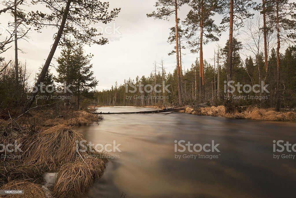 Early spring creek in Sweden royalty-free stock photo