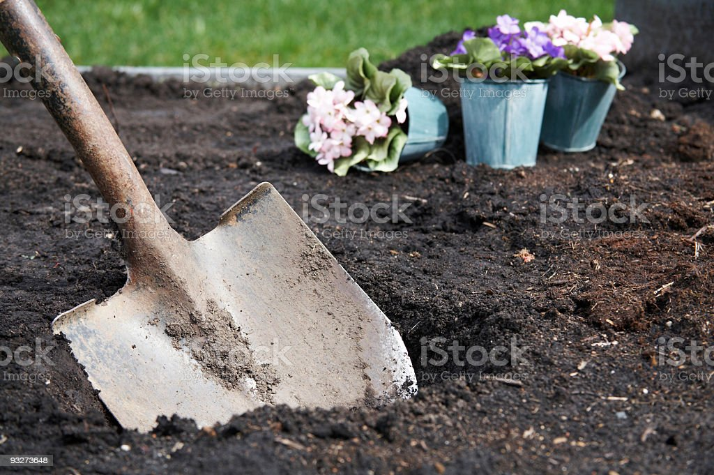 Early Spring Gardening royalty-free stock photo