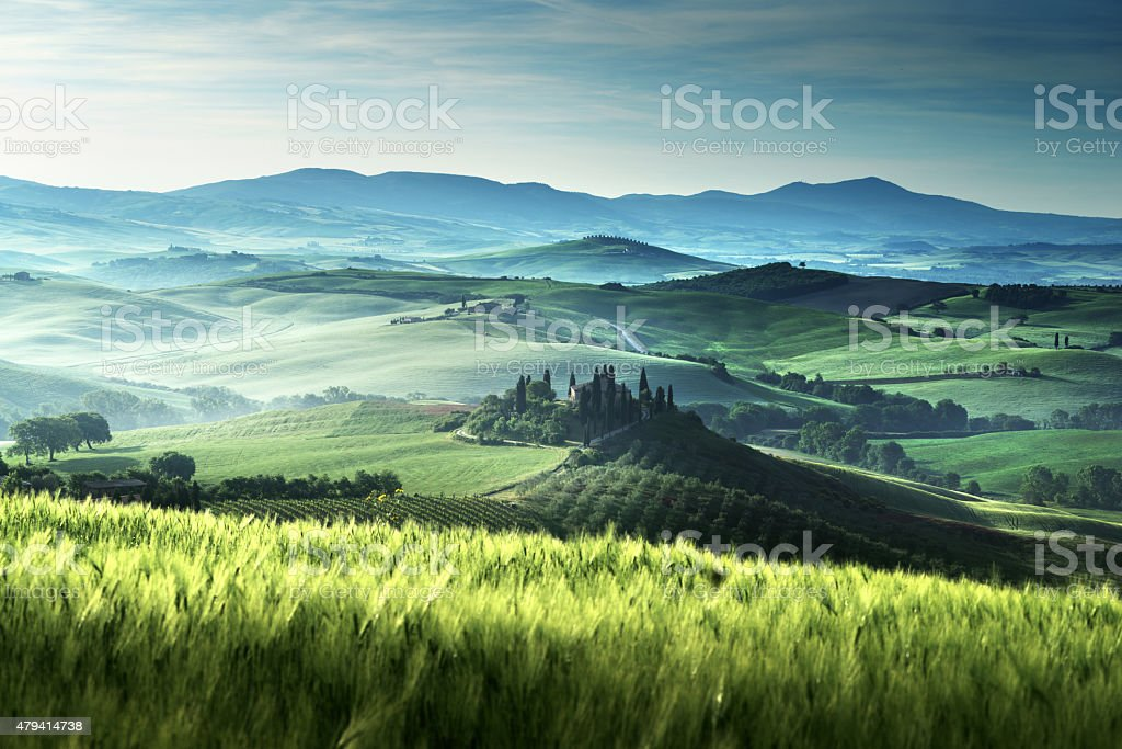 Early spring morning in Tuscany, Italy stock photo