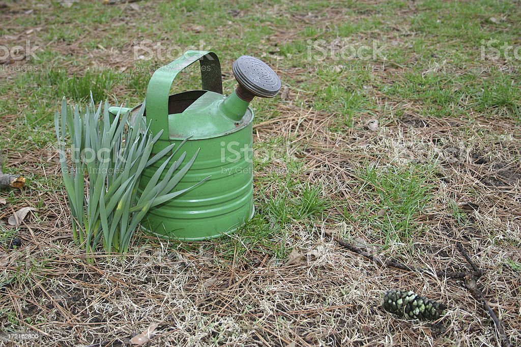 Early Spring stock photo