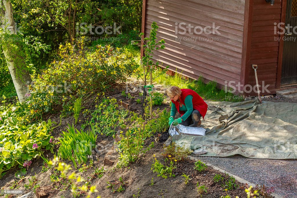 Early summer means garden work stock photo
