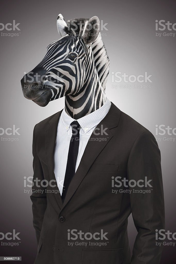 Earn your stripes in the corporate jungle stock photo