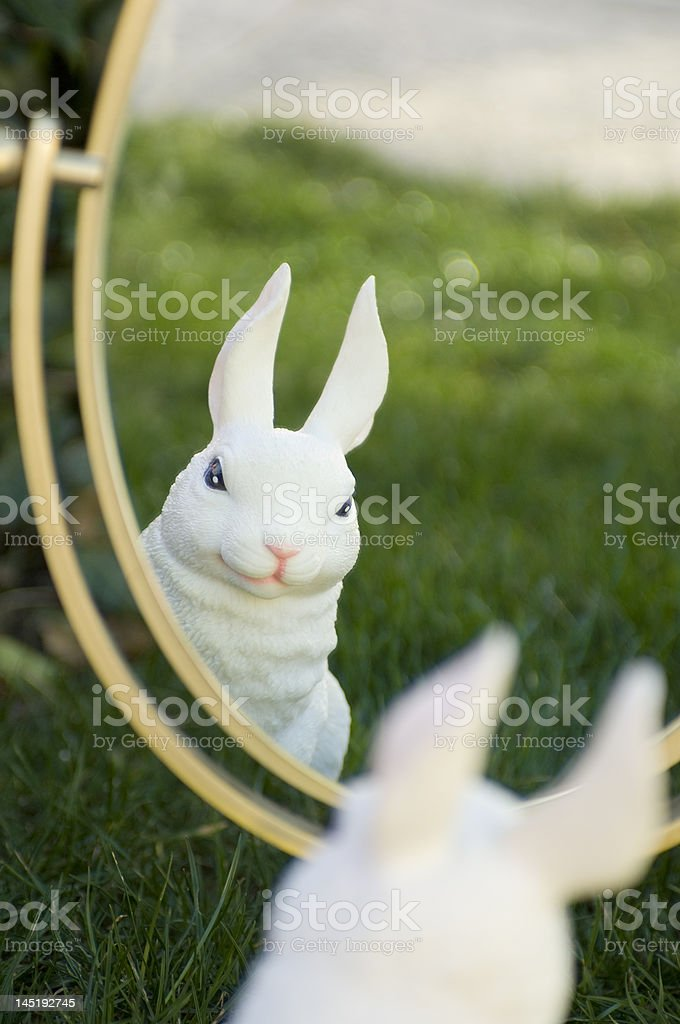 Ears looking at you royalty-free stock photo