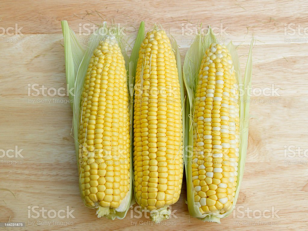 Ears of corn royalty-free stock photo