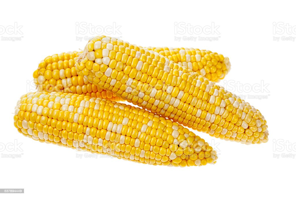 Ears of Corn stock photo