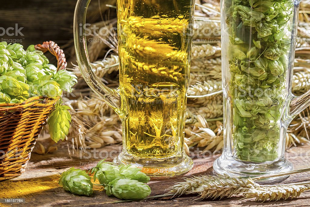 Ears of wheat in the golden fresh beer royalty-free stock photo