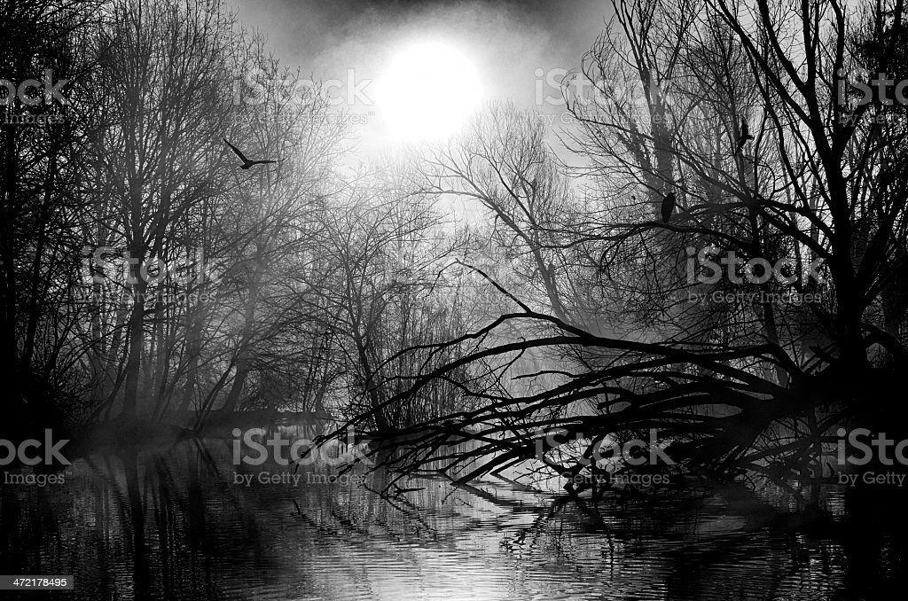 Earth After Man. Black and White royalty-free stock photo