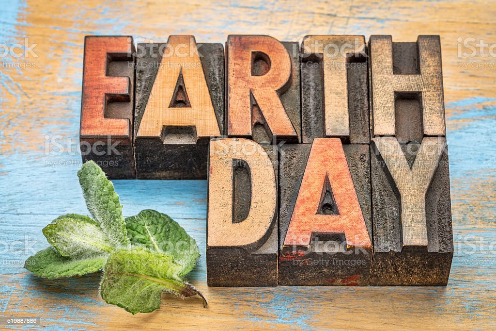 earth day in wood type stock photo