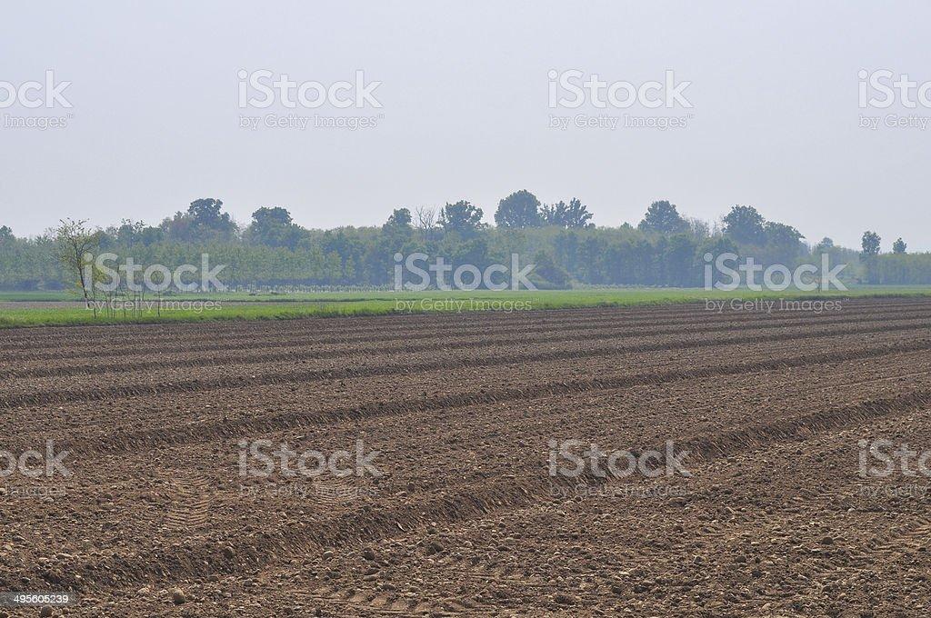 Earth field stock photo