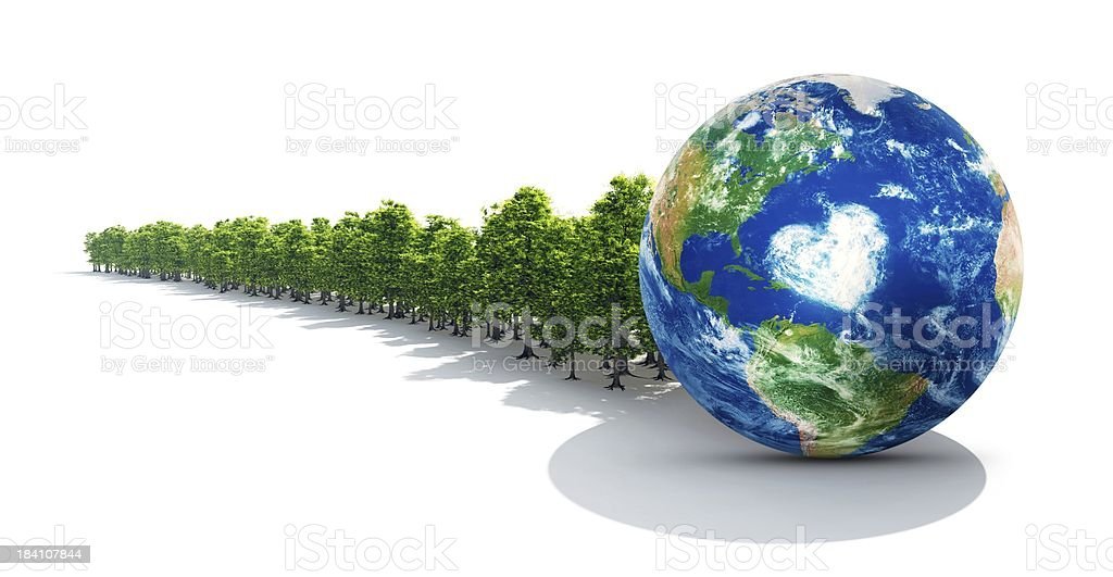 Earth In Healthy Forest royalty-free stock photo