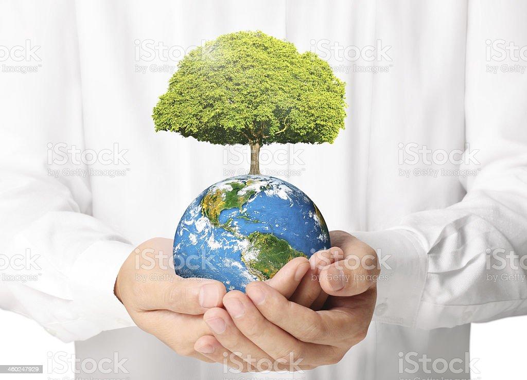 earth in human  hand stock photo