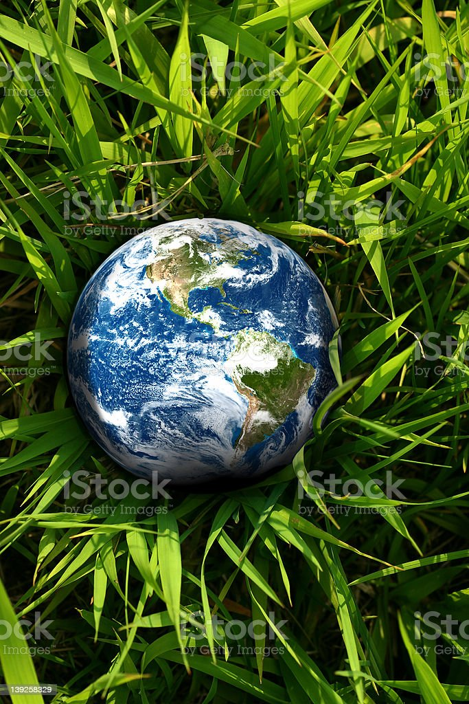 Earth Lost In Grass stock photo
