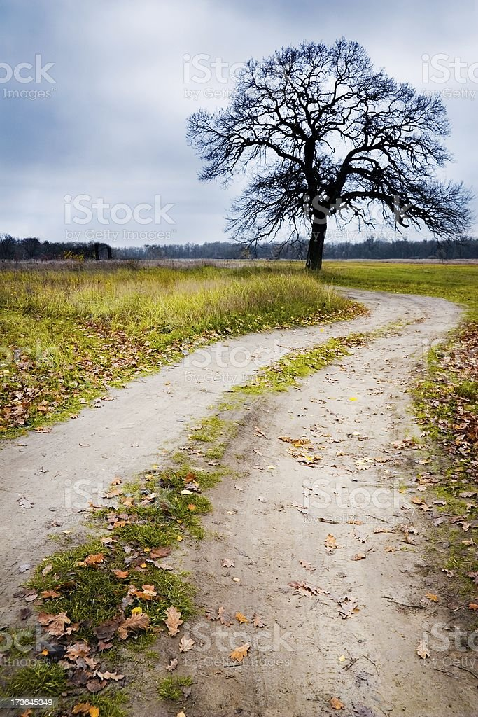 Earth road royalty-free stock photo