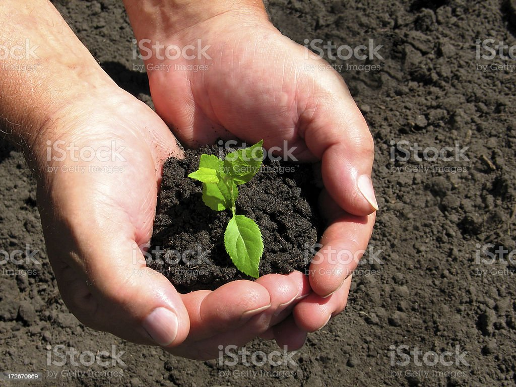 Earth's child royalty-free stock photo