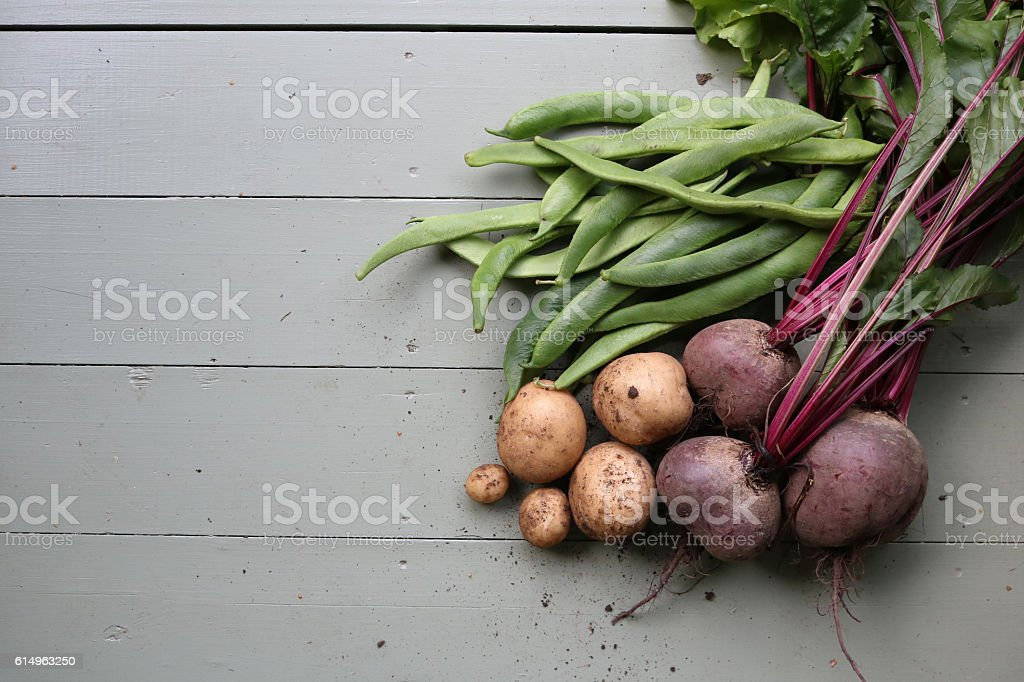Earthy potatoes, beans and beetroot on green floor stock photo