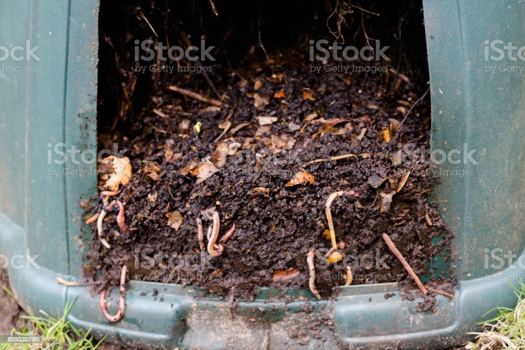 Natural, processed homemade compost in a plastic barrel with visible...