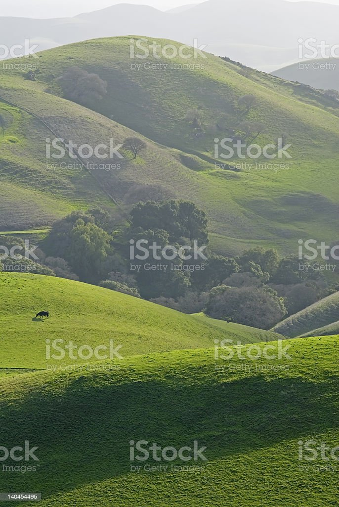 east bay countryside royalty-free stock photo