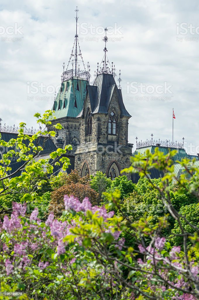 east block tower and lilacs royalty-free stock photo