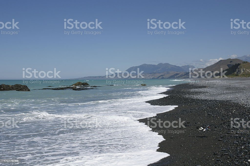 East Coast at Kaikoura royalty-free stock photo