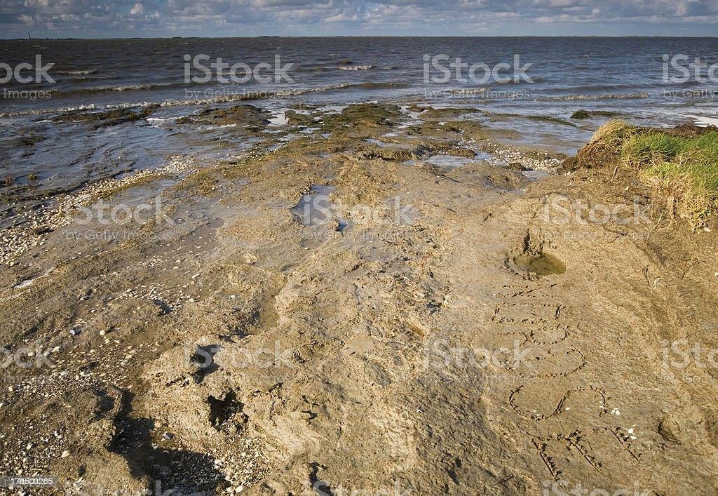 east frisia in autumn stock photo