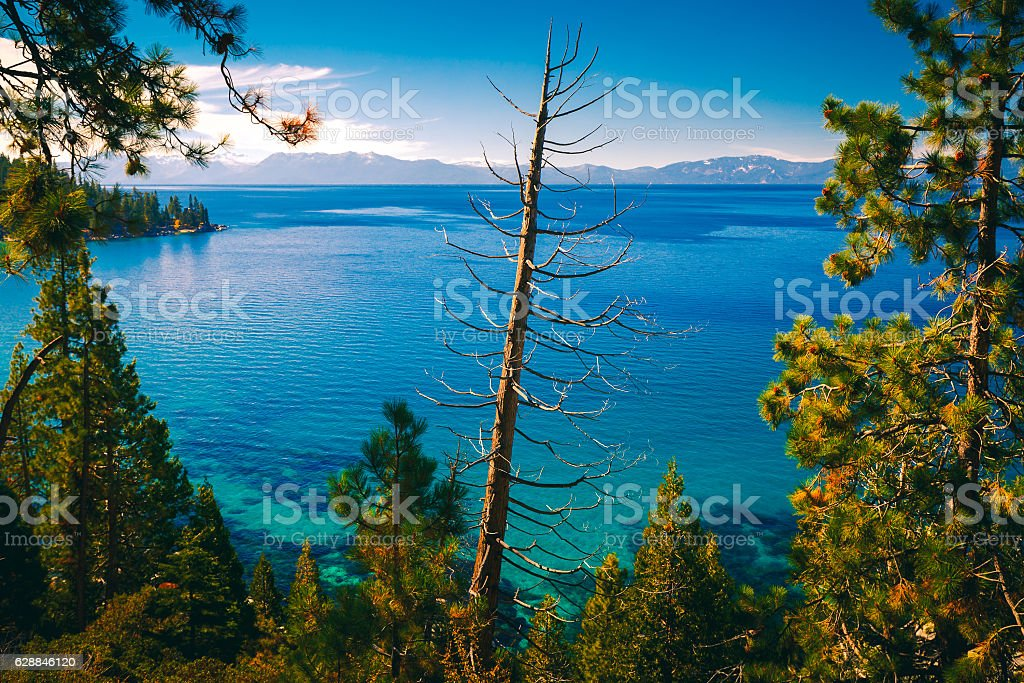 East shores of Lake Tahoe stock photo
