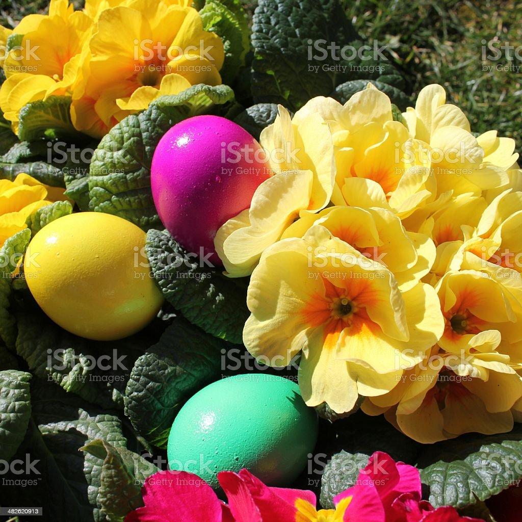 Easter, background, Easter eggs stock photo