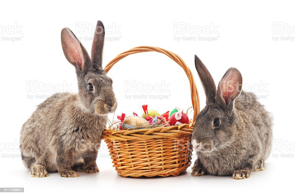 Easter basket and rabbits. stock photo
