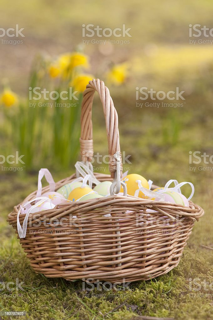 Easter basket outside in front of daffodil flowers royalty-free stock photo