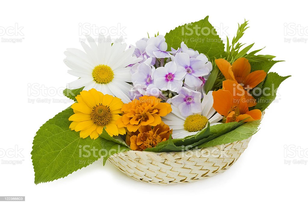 Easter basket with flowers royalty-free stock photo