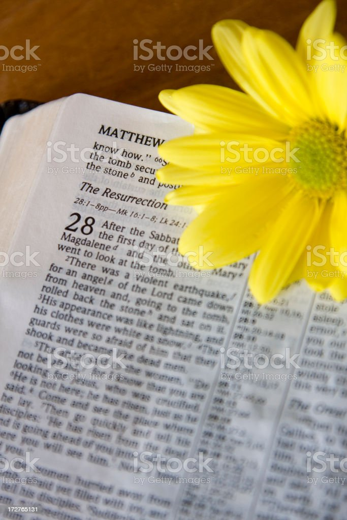 Easter Bible (#5 of series) royalty-free stock photo