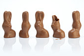 Easter bunnies – one lost its ears
