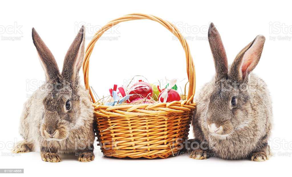 Easter bunnies with colored eggs. stock photo