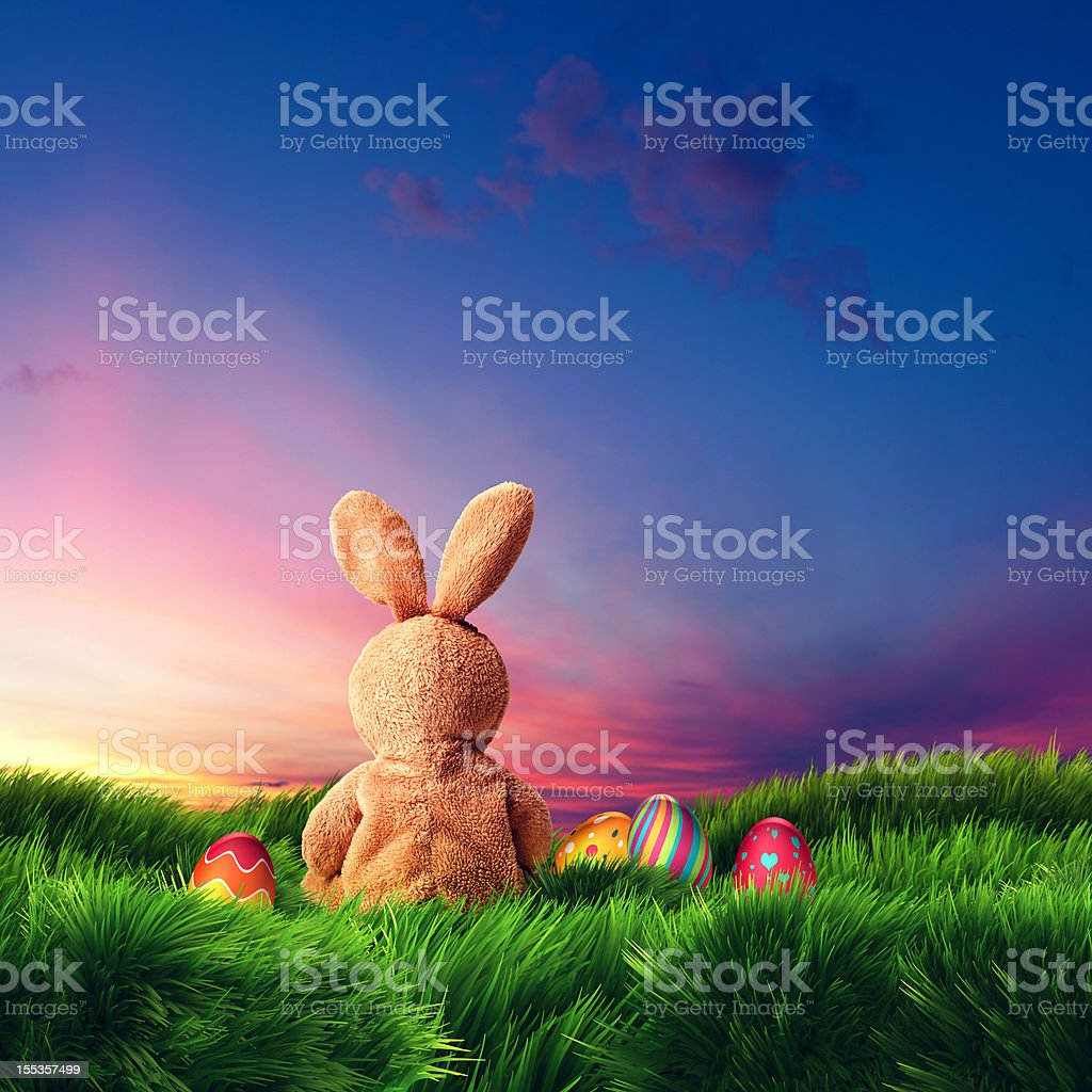 Easter Bunny and Eggs (XXXL) royalty-free stock photo