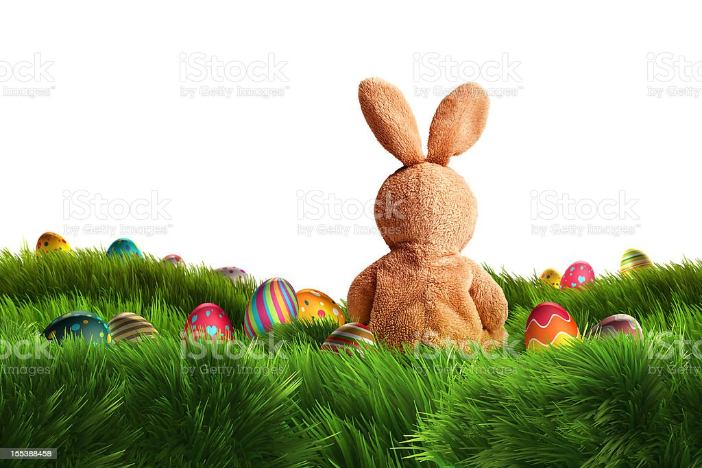 Easter Bunny and three Eggs (XXXL) royalty-free stock photo