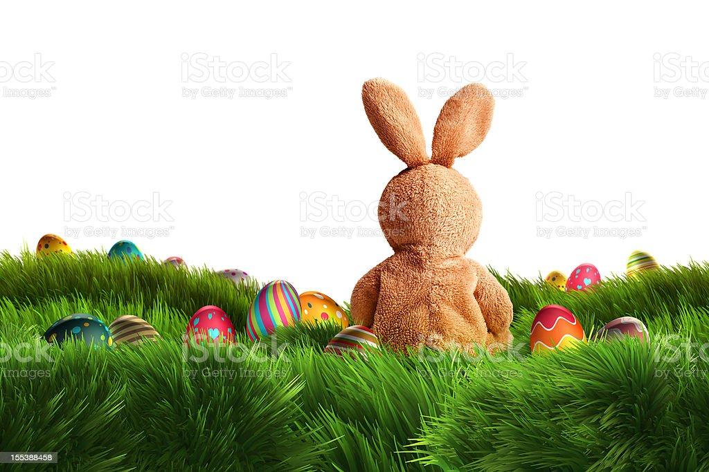 Easter Bunny and three Eggs (XXXL) stock photo