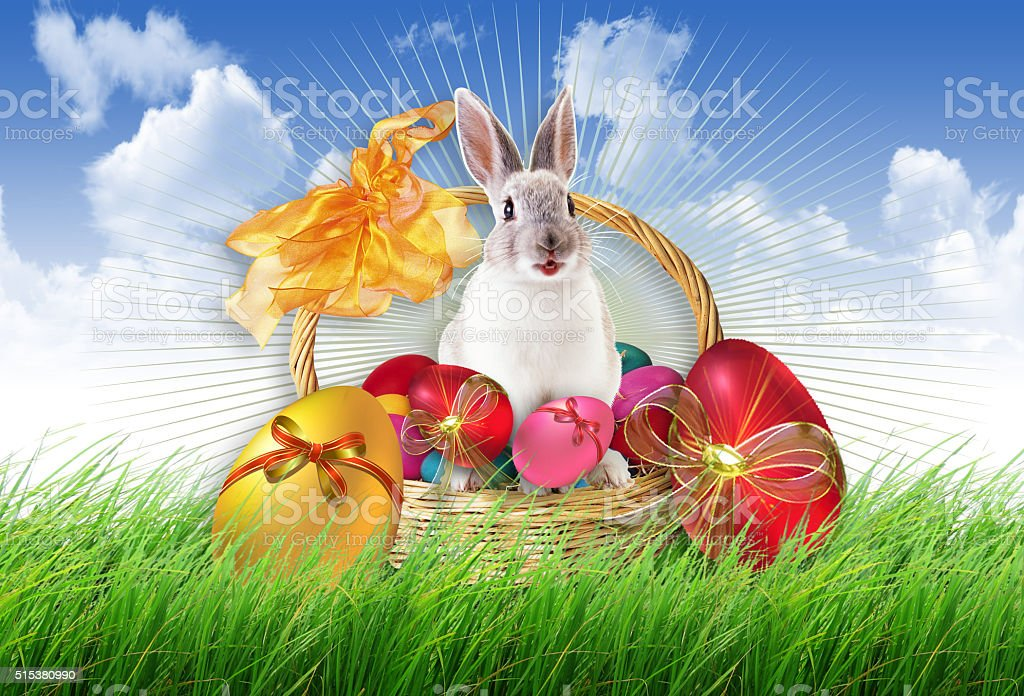 Easter bunny background, stock photo