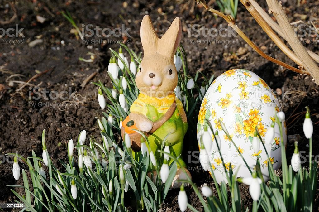 Easter Bunny, Easter, Happy Easter,  Easter Egg stock photo