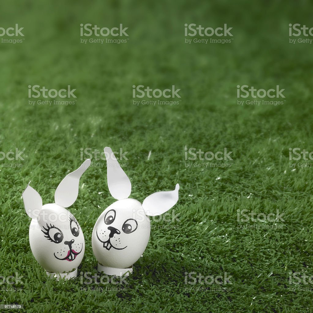 easter bunny eggs in green back stock photo
