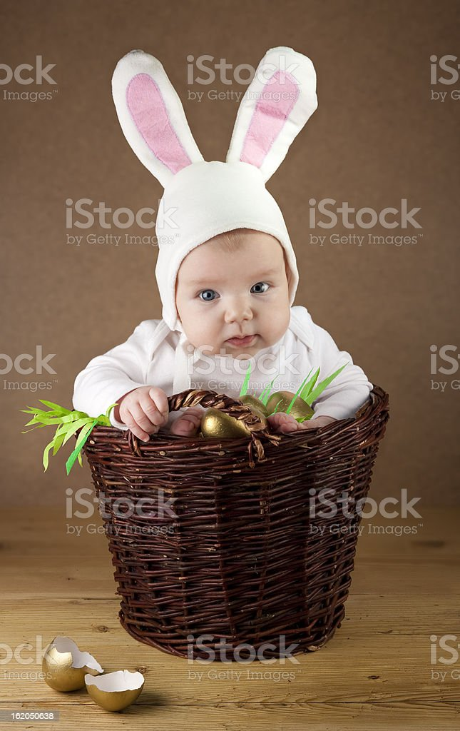 Easter bunny in the basket stock photo