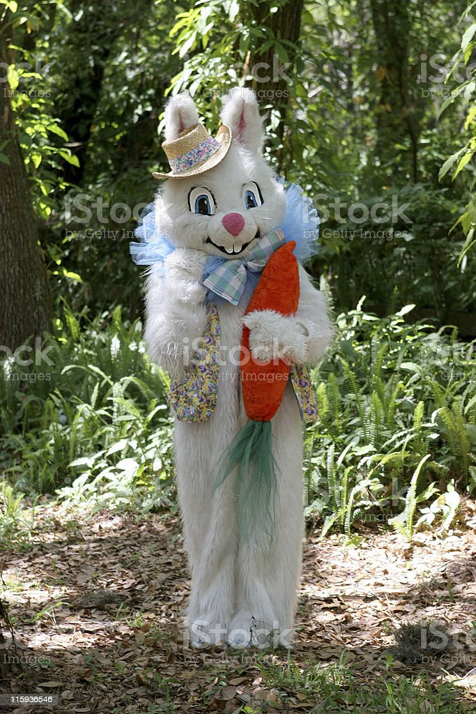 Easter Bunny In Woods stock photo