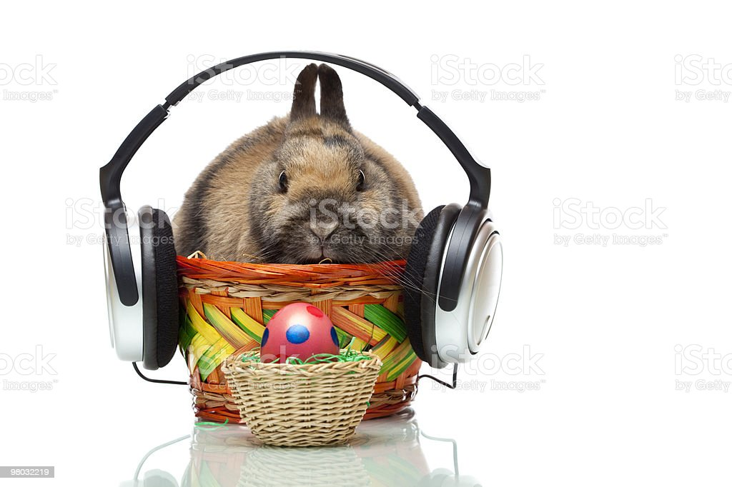 Easter bunny sitting in basket with headphones and egg stock photo